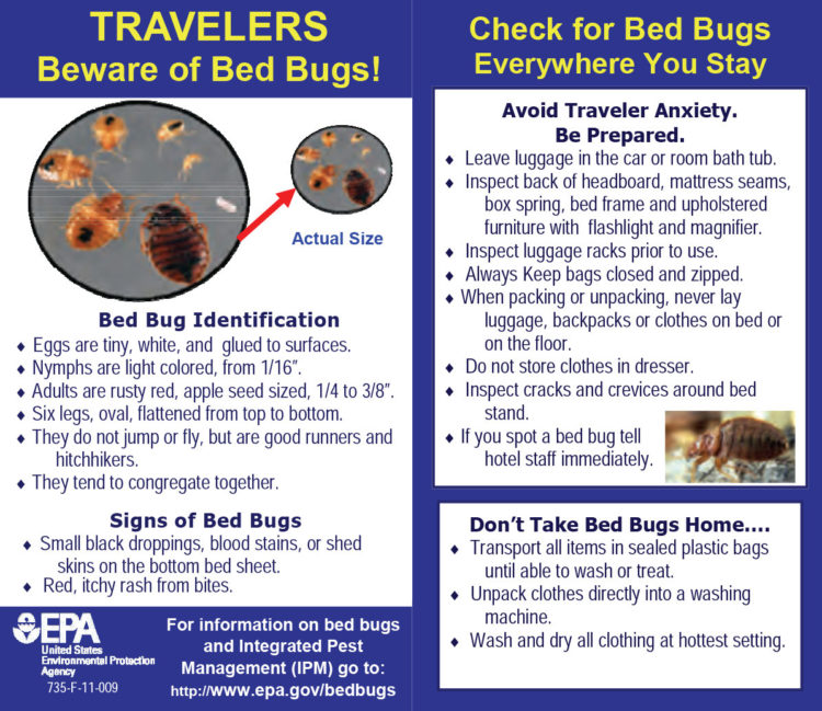 EPA bed bug tips for hotel travel