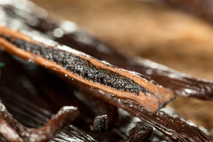 Raw vanilla beans - seeds