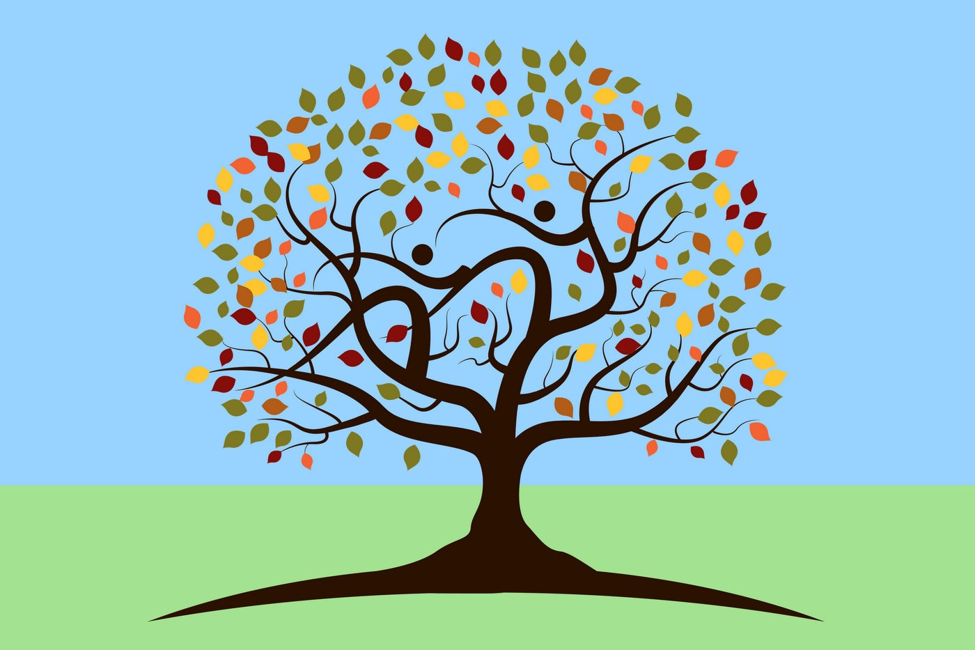 The family tree - with leaves and branches and cousins