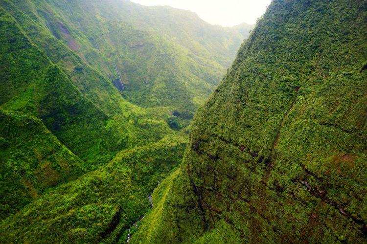 Raniest place in the US - Mt Waialeale - Kauai Hawaii