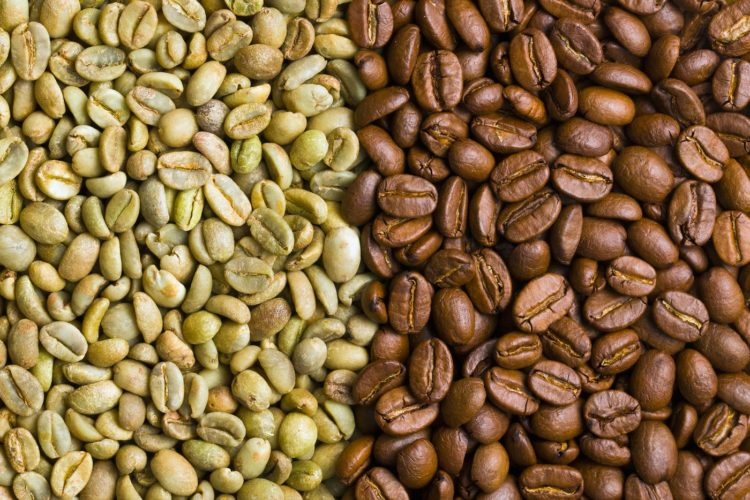 Unroasted green and roasted coffee beans