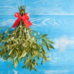 Is mistletoe poisonous