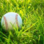 Baseball in green grass