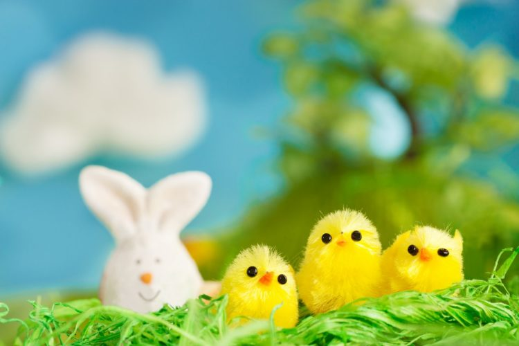 Toy bunny and chicks