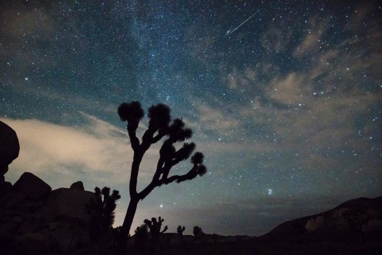 Perseid meteor over Joshua Tree National Park in 2015 - Credit National Park Service Brad Sutton