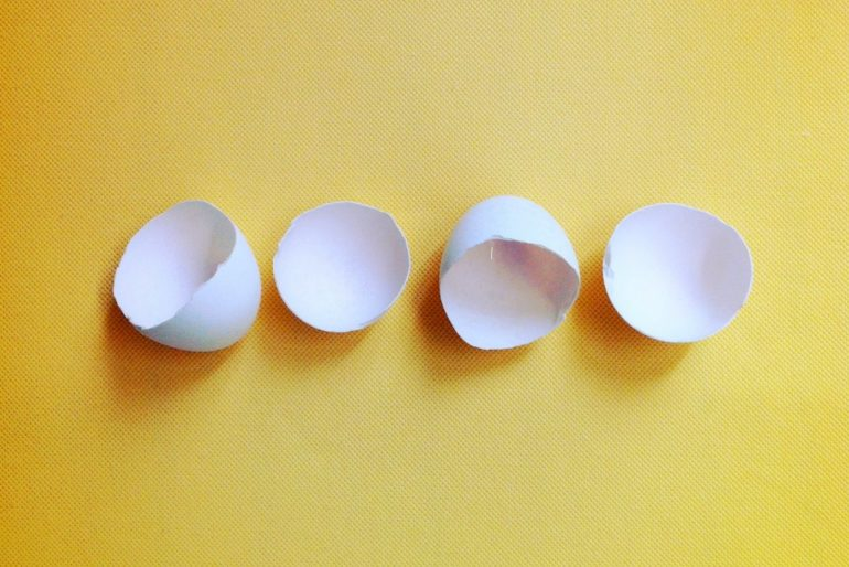 Can you put egg shells down the garbage disposal?